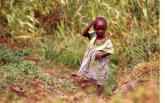 Girl in Field, D.R. of Congo