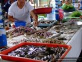 Fish Market in Mindanao, Philippines